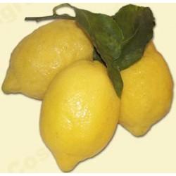 Limoni - Cassetta da 13 Kg